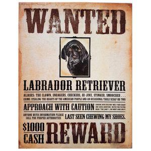 Placa-De-Metal-Procura-se-Labrador