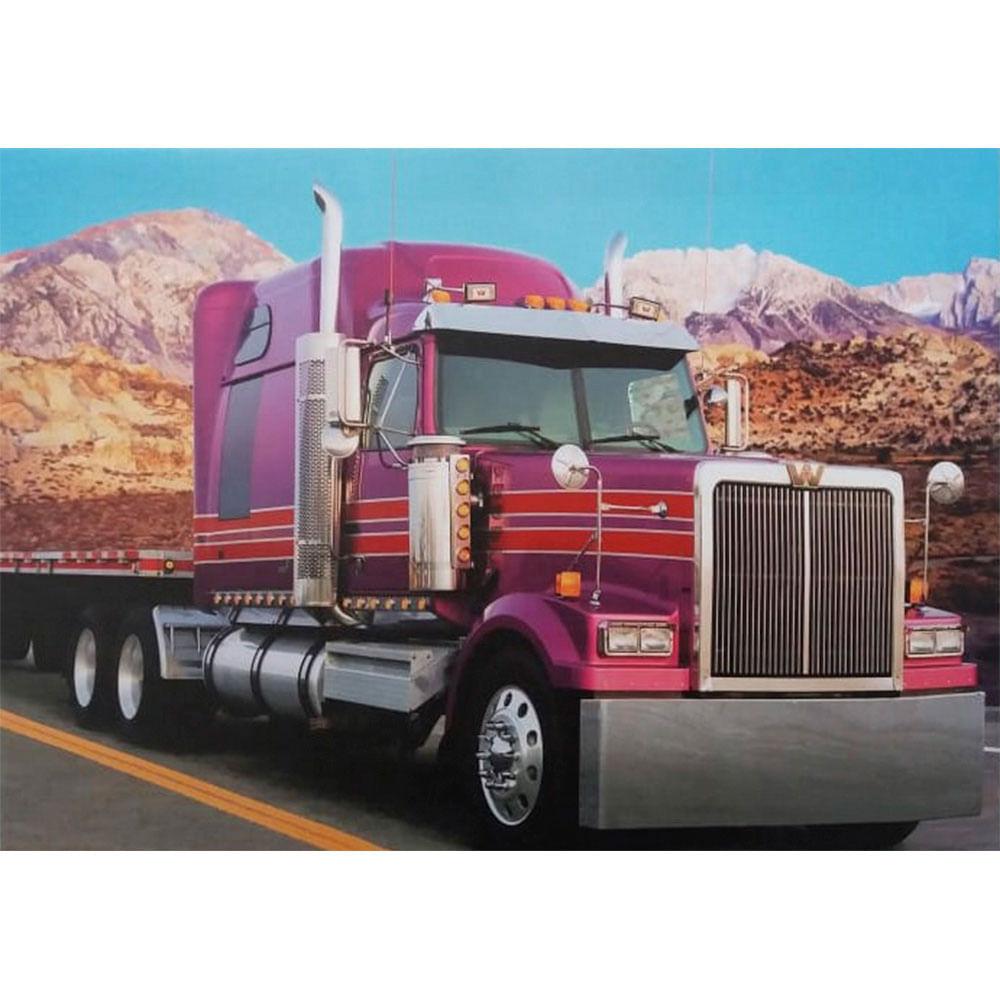Quadro-Tela-Caminhao-Truck-Pink