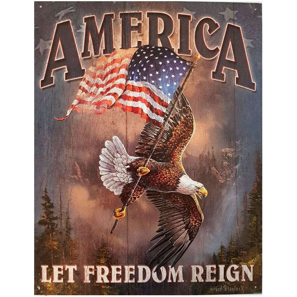 Placa-De-Metal-America-Aguia-Da-Liberdade
