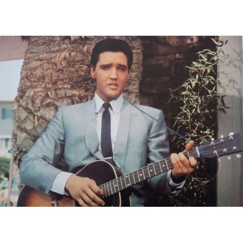 Quadro-Tela-Elvis-Presley-Blue-Suede-Shoes