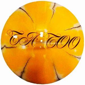 escudo-decorativo-fibra-de-vidro-tatto